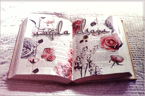 زهرة الكلمة كتاب